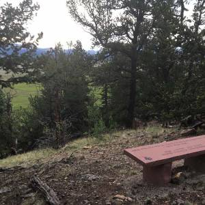 gubser-bench