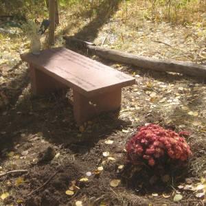 woods-bench